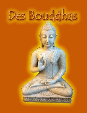 Mala india 17 08 2017 des bouddhas for Mala india magasin waterloo